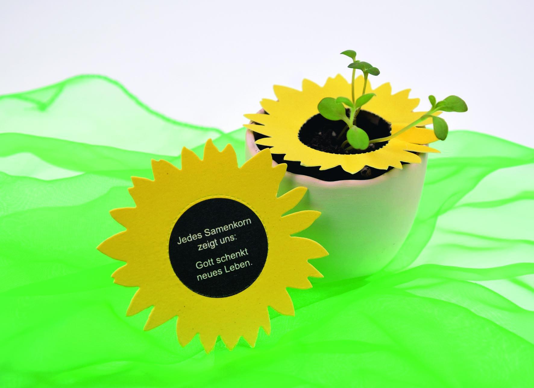 """Pflanzkärtchen """"Sonnenblume"""""""
