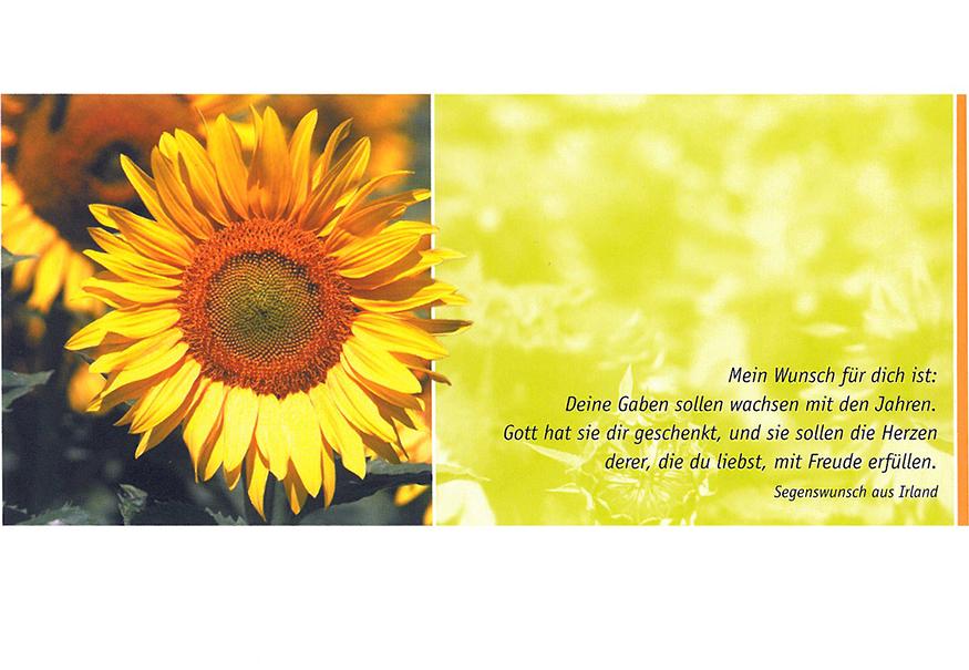 Postkarte Augenblicke der Besinnung – Geburtstag Sonnenblume