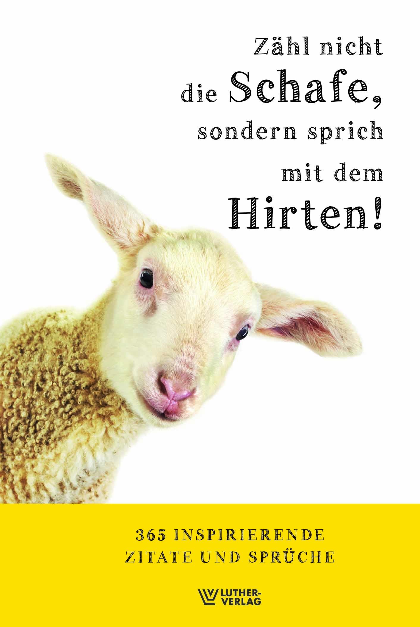 Buch: Zähl nicht die Schafe, sondern sprich mit dem Hirten